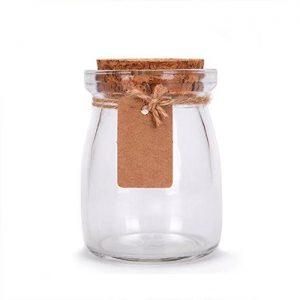 200ml pudding glass jar with cork