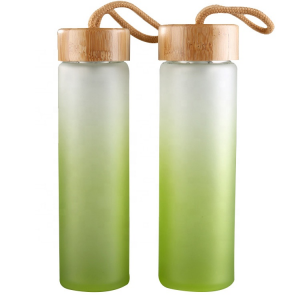 Custom colored 500ml water glass bottle with bamboo caps